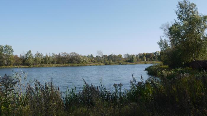 рыбалка на поповских прудах