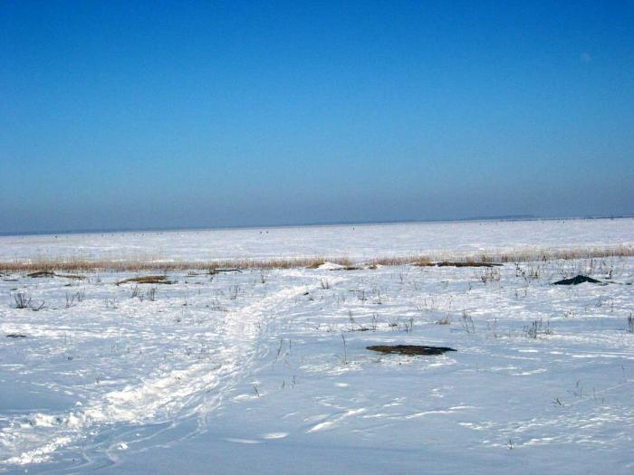 Озеро Алабуга Зимние караси