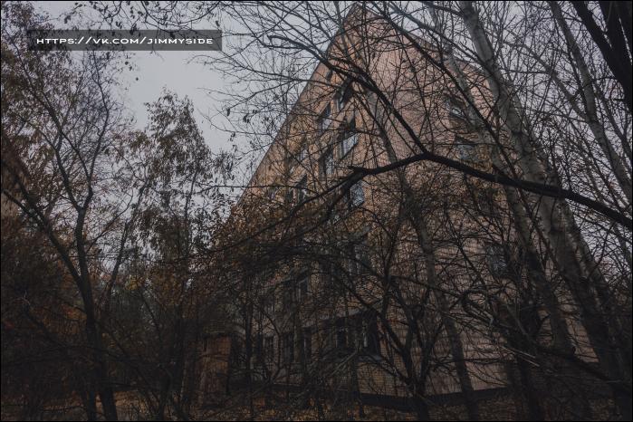 Городская поликлиника ул. нижегородская область