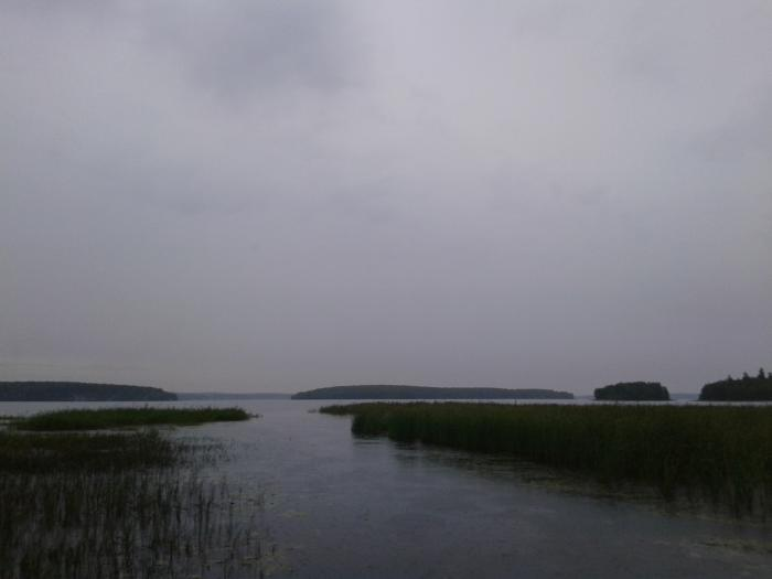 река ельчевка в дегтярске рыбалка