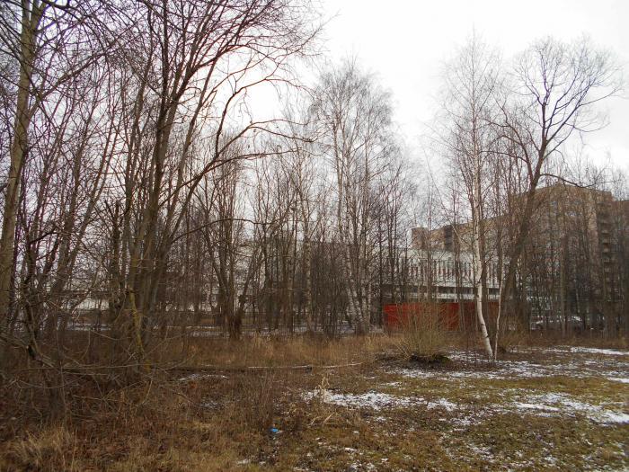 Больница 2 в белгороде адрес