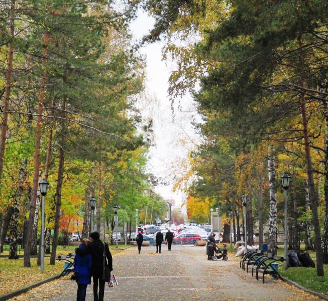 еженедельную рассылку фотографии центрального парка города новосибирска контакта сокете