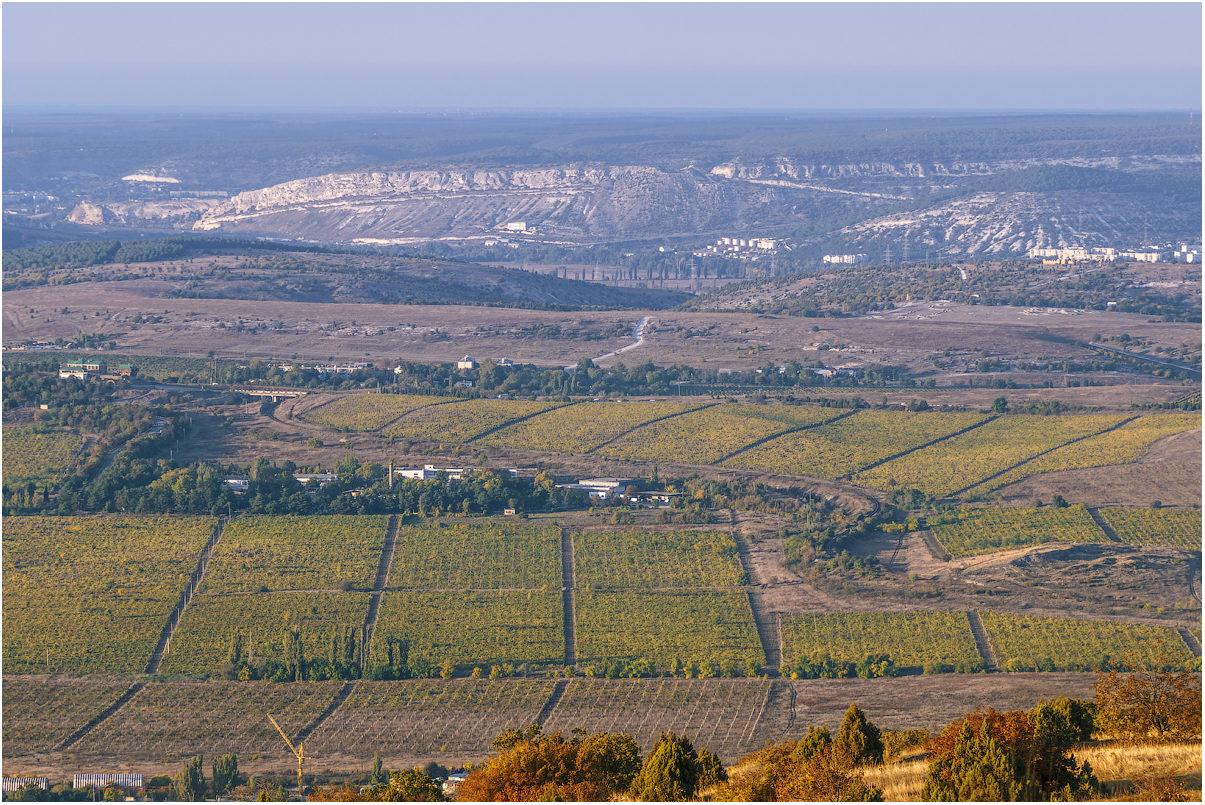Картинки по запросу Золотая балка Севастополь виноградники
