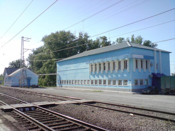 Чернушинская районная больница номер лицензии
