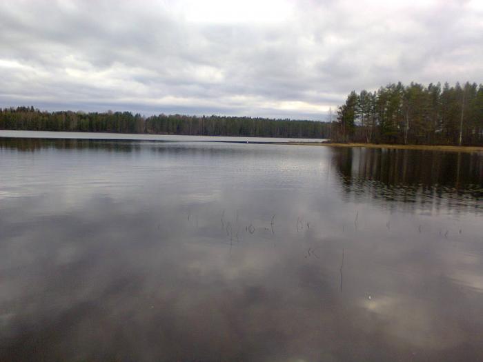 Озеро пюхяярви карта - 1b73e