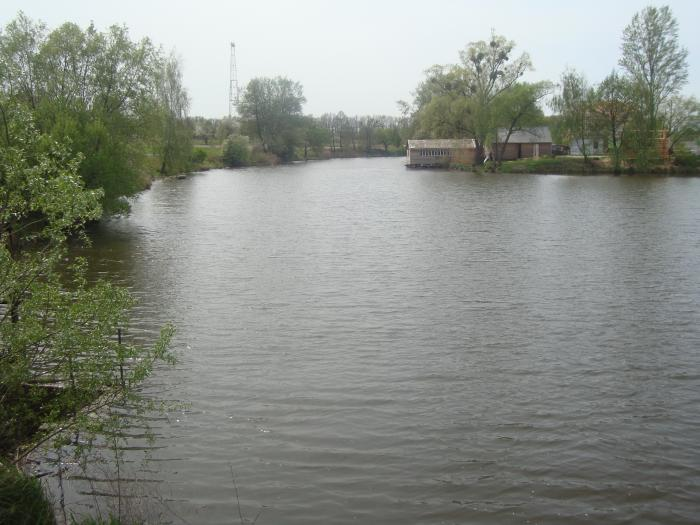 прогноз клева рыбы белозерск вологодская область