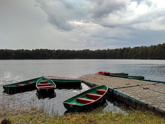 лодки от василича