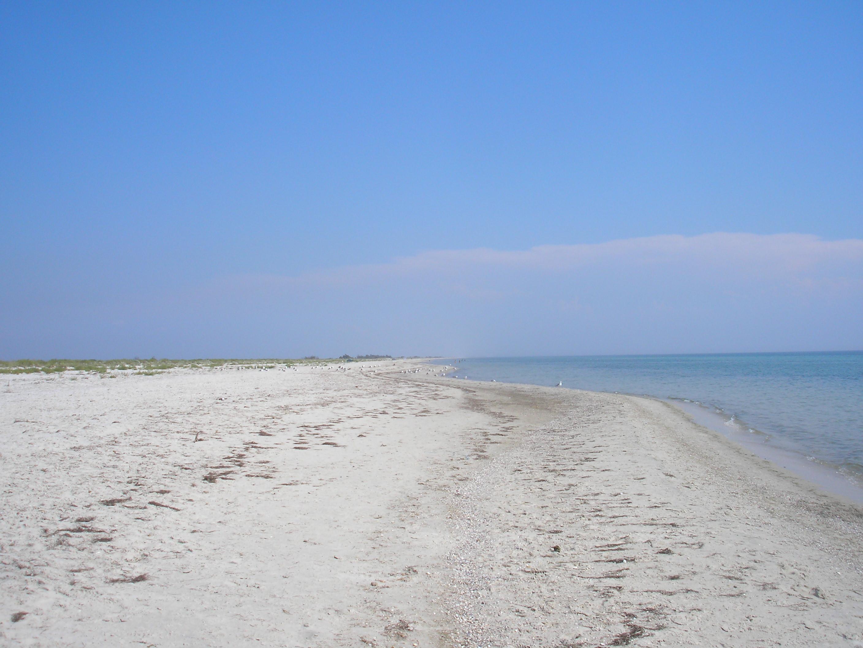 Фото с нудиского пляжа евпатории