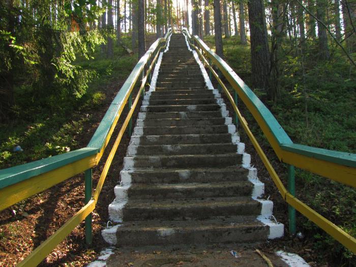 Лестница к озеру своими руками 10