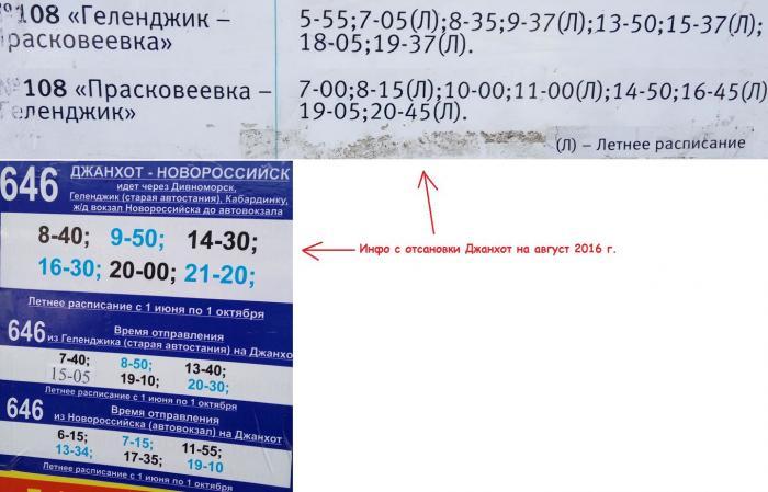 Стоимость билета спасск-лучегорск автобус