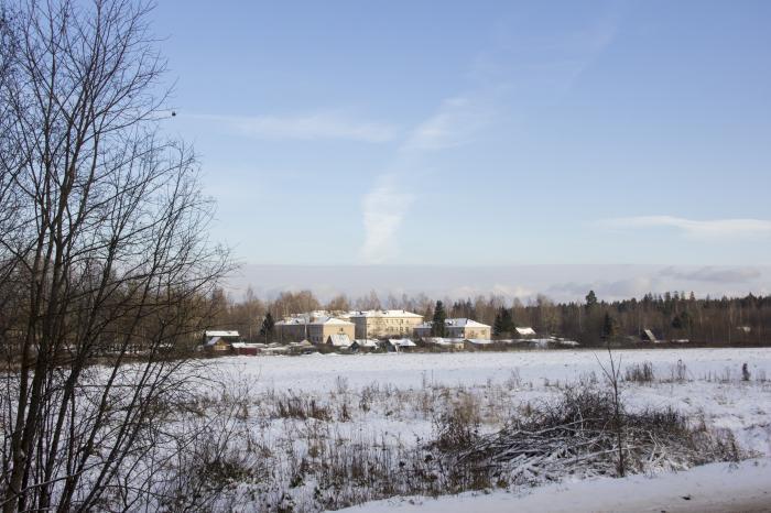 Брестская областная больница халтурина