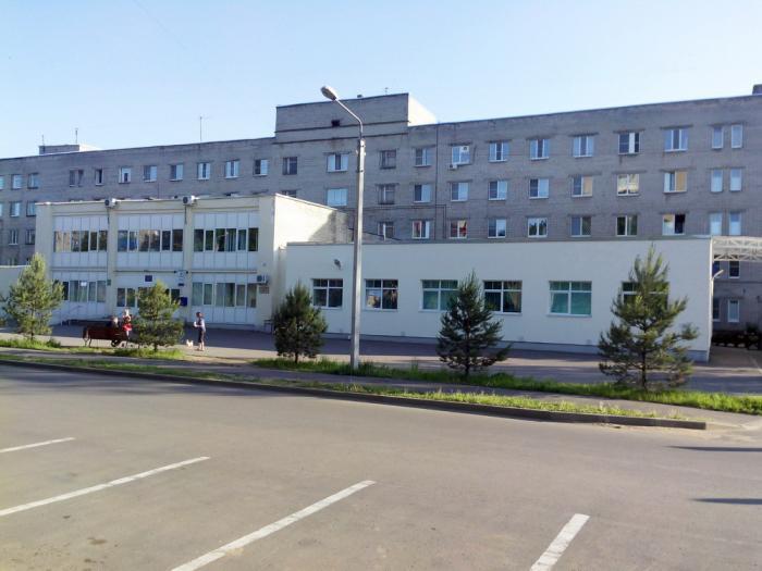 Елена сергеева врач педиатр