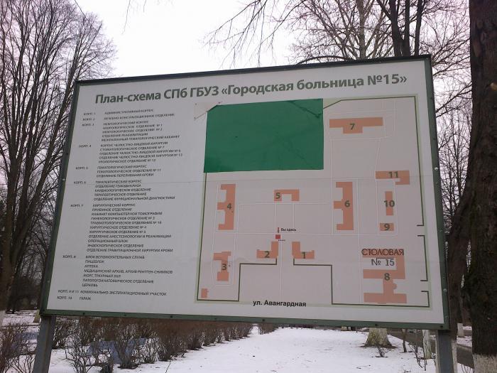 Запись в поликлинику электросталь московской