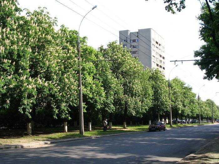 Регистратура областной больницы анненки калуга