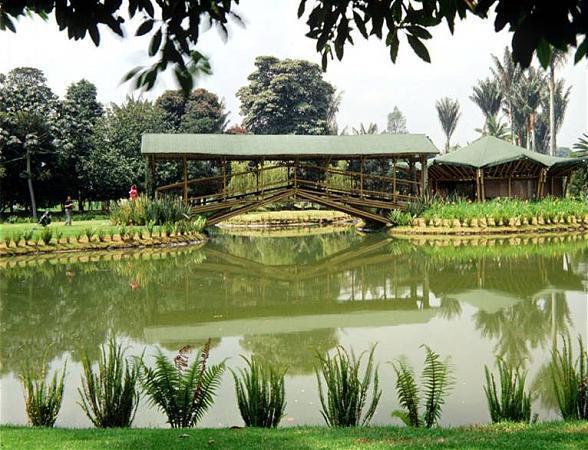 Jardín Botánico \