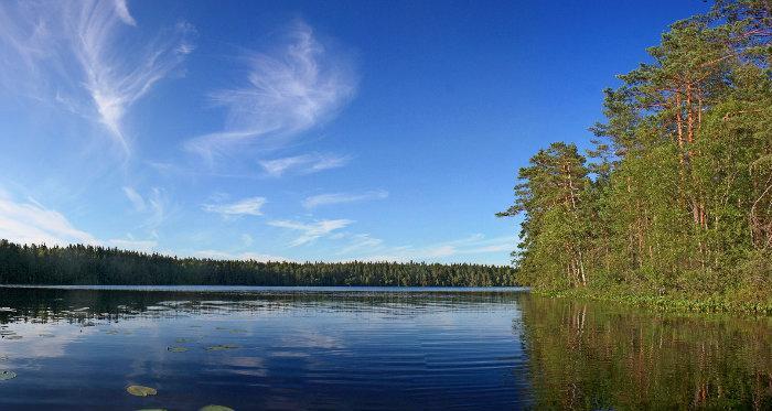 Озеро красное выборгский район рыбалка