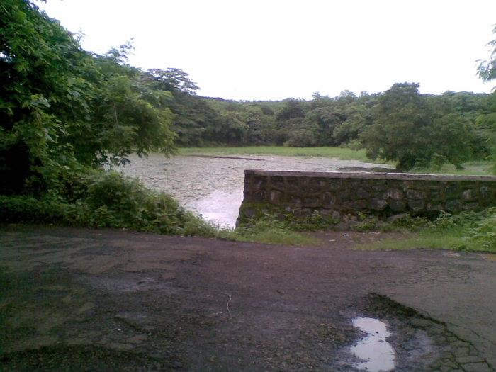 Image result for aarey colony lake