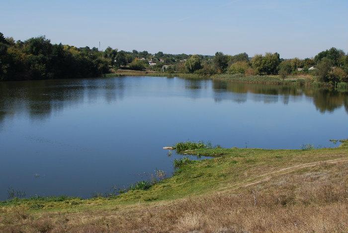 Картинки по запросу сільський ставок