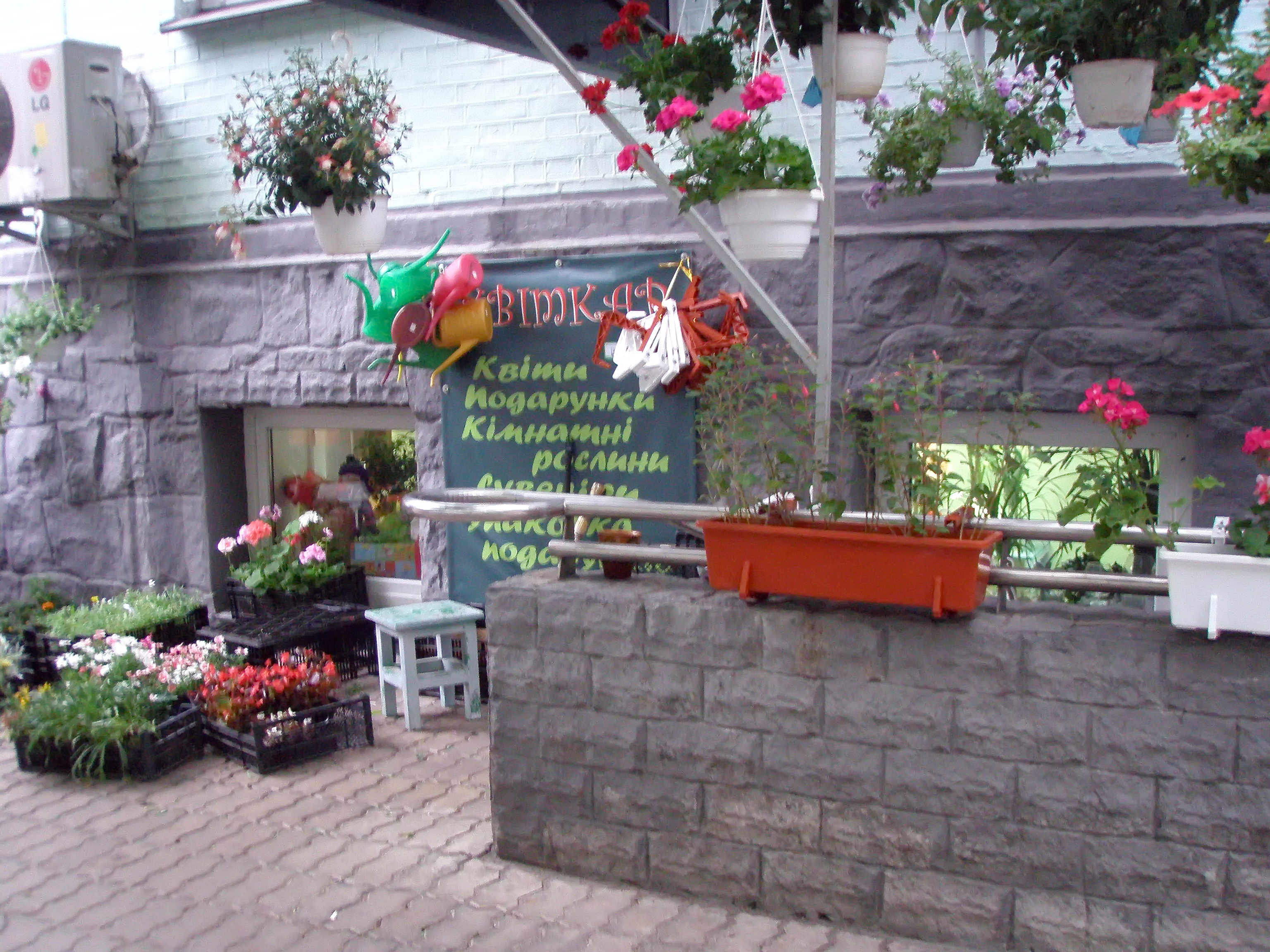 Магазин цветы киев недорого