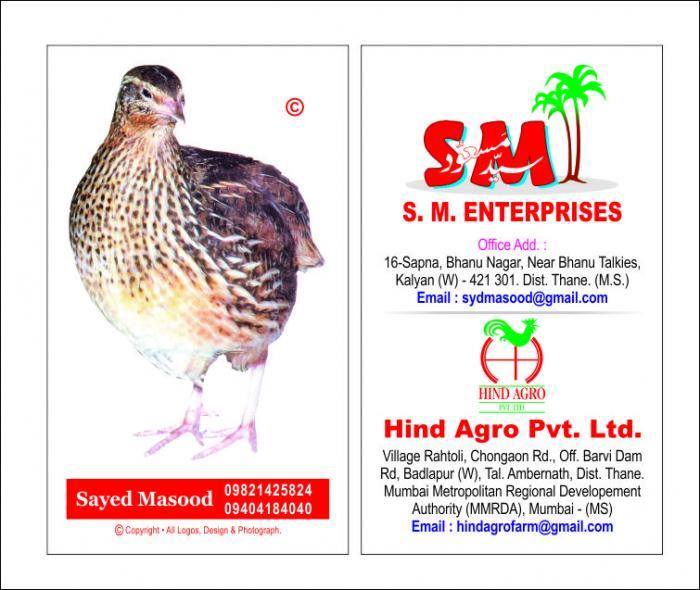 Hindustan Poultry Farm/India's biggest Quail farm project