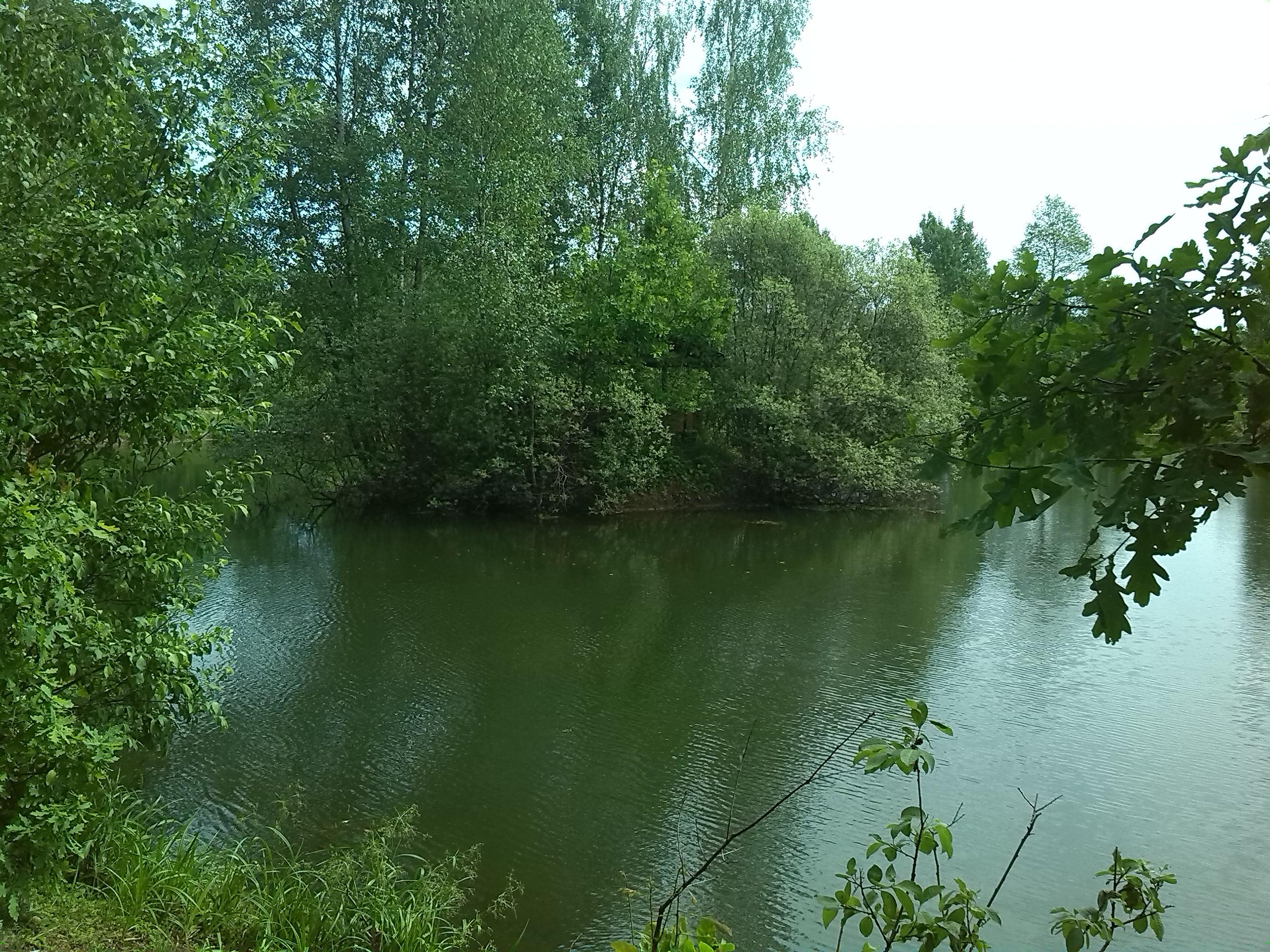 Рыбалка на ильинском пруду