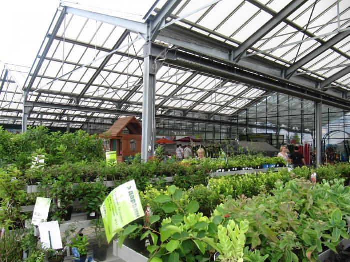 Магазин растений дарвин на симферопольском шоссе