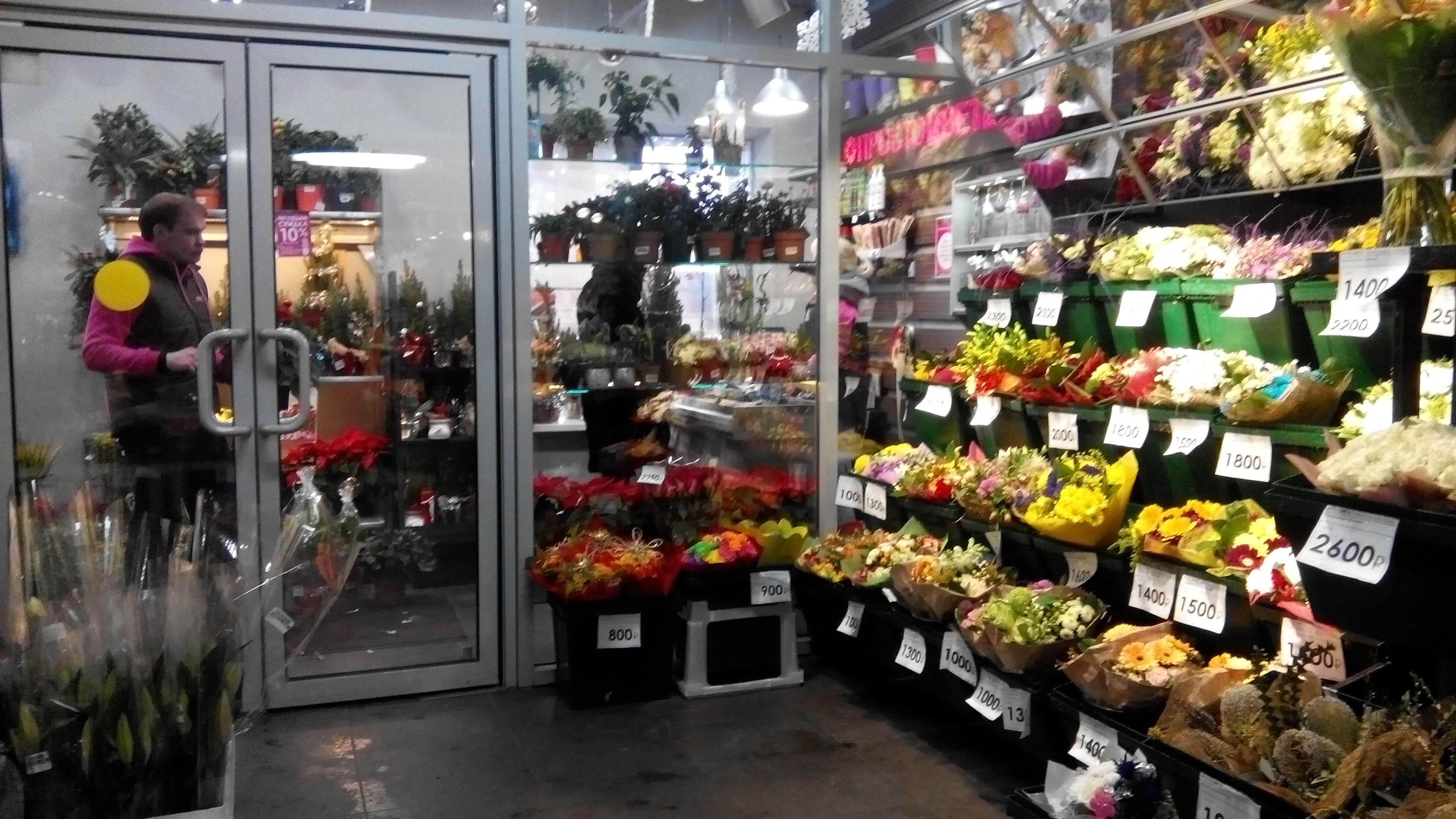 Хайфе, магазин цветы мира в москве каталог