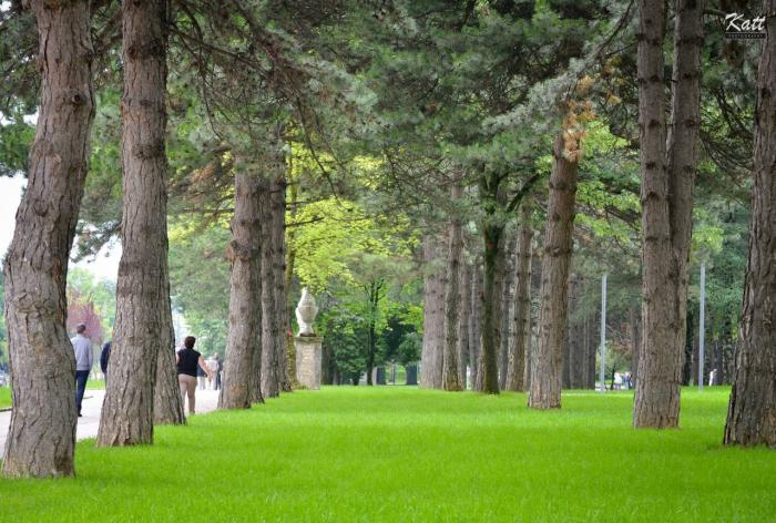 Parku