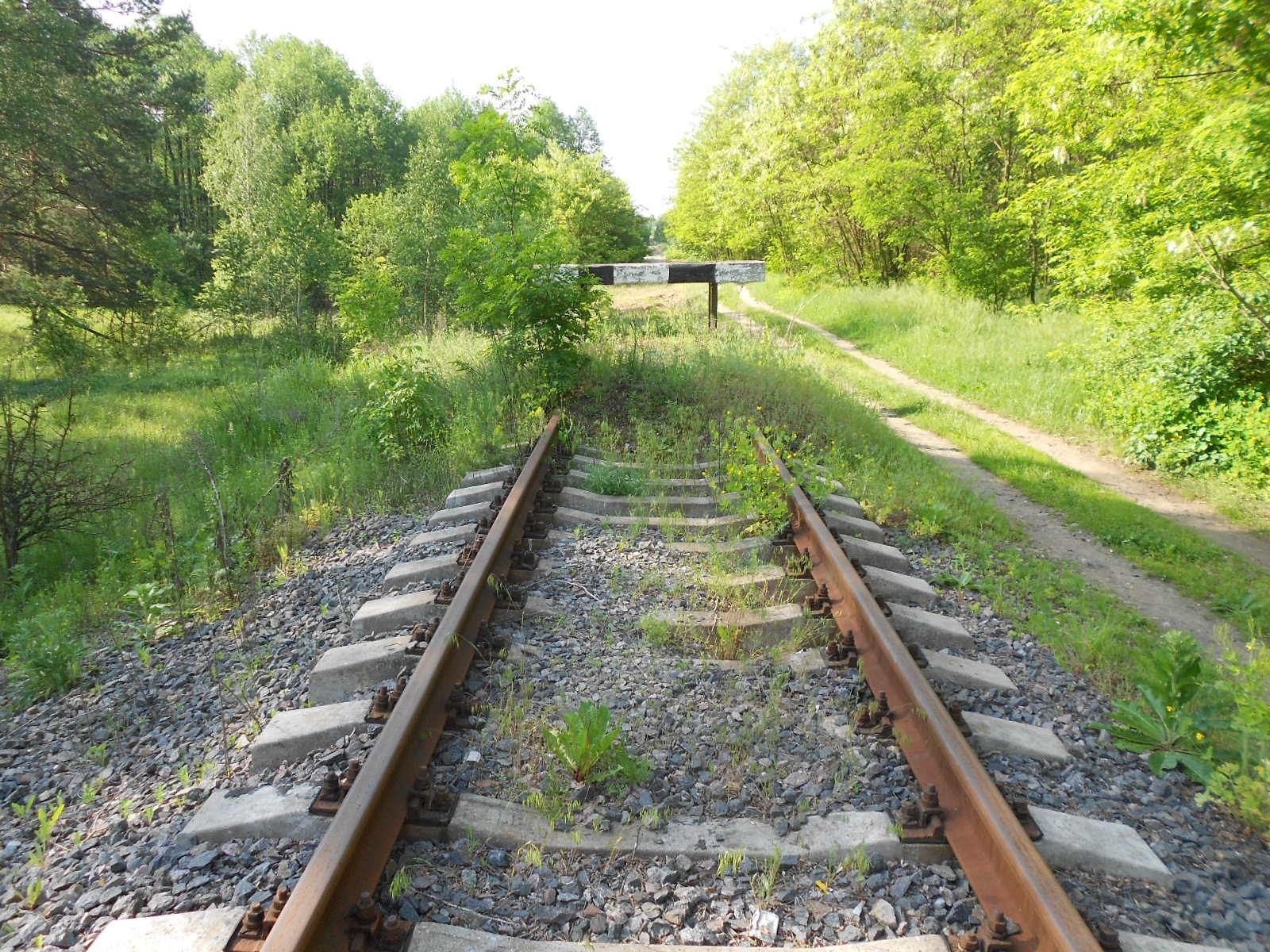 Снежинская железная дорога: есть ли стальная связь с Россией?