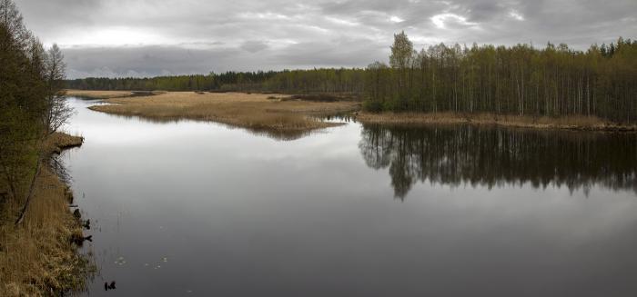 Рыбалка на реке Желча Здравствуй, лето